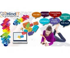 Bulk SMS,Bulk SMS Delhi,Bulk SMS Provider Delhi,Bulk SMS Company Delhi